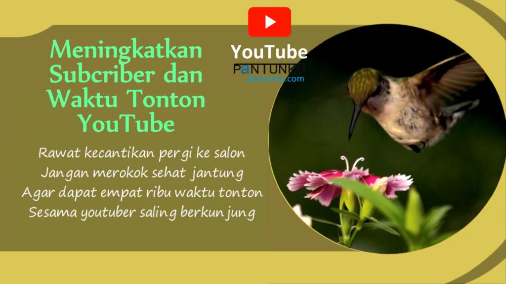 Meningkatkan Subcriber dan Waktu Tonton Youtube